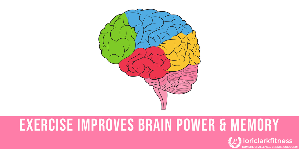 Exercise Improves Brain Power