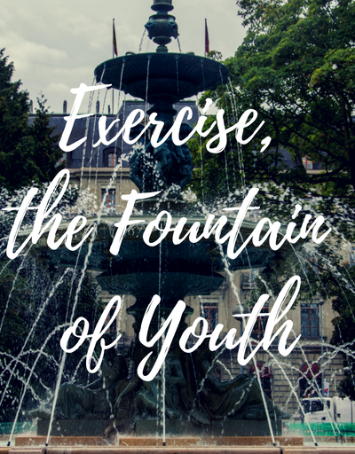 FOUNTAIN OF YOUTH 01
